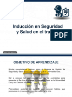 Induccion SST- Contratistas 2020 (6)