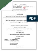 fatima-Nouadria