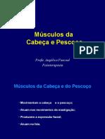 Músculos da Cabeça e Pescoço