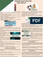 infografia sauerskraut