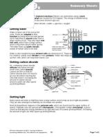 9B Summary Sheets