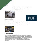 10 problemas culturales en guatemala
