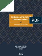 Cinema Africanos Contemporâneos, Abordagens Criticas