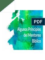 ALGUNOS PRINCIPIOS DEL MENTOREO BÍBLICO - parte 1 - prueba