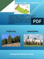 Agendas y Apuestas Unidad II (1)