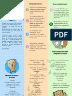 Copy of Copy of Copy of Brochure Ppe's Program