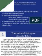 Rotaru, Sarcina IV [Autosaved]