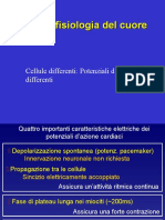 Il Cuore-Elettrofisiologia