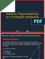 RazonestrigoTrianguloRectangulo