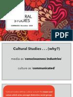 COMM6502.Cultural Studies.november 2020.OURVLE