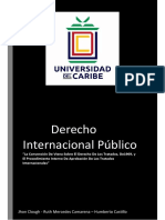 Trabajo Final Derecho Internacional Publico