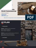 Définition et Particularité du Droit Commercial