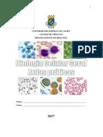 Biocel manual lab