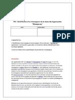 TP  identification d'un champignon de la classe des Zygomycetes  ''Rhizopus sp.''