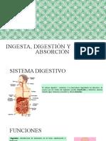 Ingesta, Digestión y Absorción