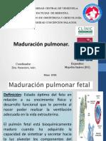 maduracion pulmonar. maye