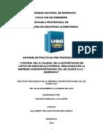 Informe de Practicas Unab- Aarón Idiaquez