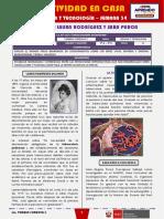 SEMANA 34 - APORTES DE LAURA RODRÍGUEZ Y SARA PURCA [2do CIENCIA Y TECNOLOGÍA]