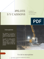 MICROPILOTES Y CAISSONS  expo