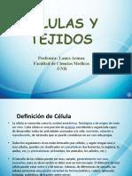 Celulas y Tejidos (1)
