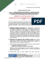 DPAyT 54-2020 Sieel Atencion Virtual