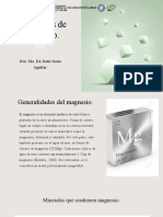 Presentación Magnesio