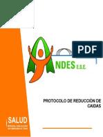 2. PROTOCOLO REDUCCIÓN DE CAIDAS (1)