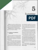 4 Excitibilidad Neuronal