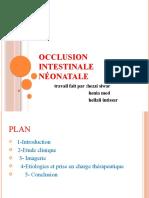 Occlusion-intstinale-neonatale  swar