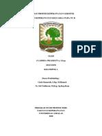 laporan Gerontik Ansietas