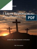 salmi_demo