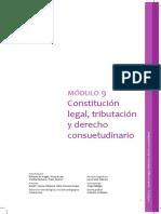 Modulo9 - Constitución Legal, Tributación y Derecho Consuetudinario