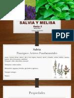Salvia y Melisa II