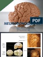 Dr._Enrique_Matallana._Neurosonografia_fetal_pdf