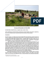 Survey and Excavation at Utica 2010 - Report Final