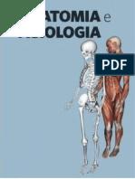 Resumo Matéria Teórica Anatomia