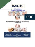 Lesiones Elementales de La Piel. Primaria y Secundaria PDF
