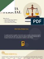 Prueba Pericial-DPP (1)