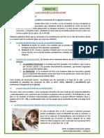 Ficha Nº 2 - Las Etapas de La Revelación - 2do Sec. (1) (1) Tarea