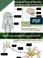 Neurónios_impulsonervoso (1)