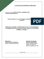Memoire Expertise Comptable Final
