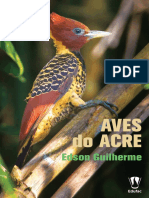 Edson Gulherme - Aves Do Acre