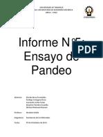Informe Final Pandeo