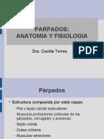 Anatomía de los parpados