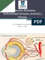 circulacion retiniana, obstrucciones vasculares