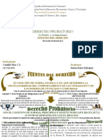 Mapa Conceptual-DERECHO PROBATORIO-LA PRUEBA-VENEZUELA