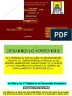 Desarrollo Sostenible Trabajo (1)