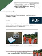 Fr-g-042 Acta de Conformacion Copasst