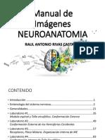 Imágenes Resueltas de Neuro Anatomía