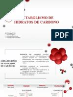 Metabolismo de hidratos de carbono